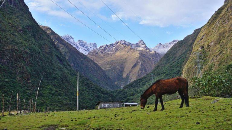Auf dem Salkantay Trek in Peru