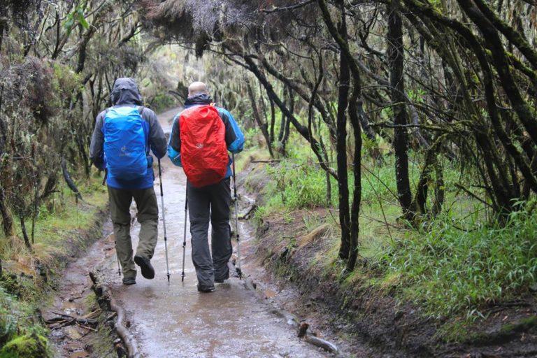 Wanderung durch den Regen beim Abstieg