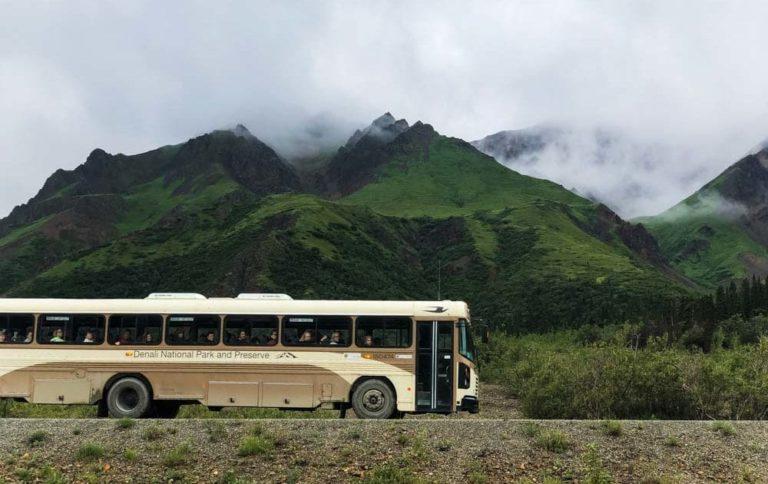 Bus im Denali