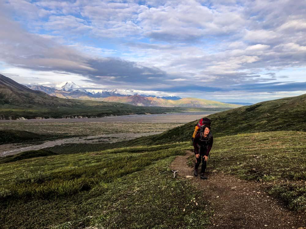 Wandern mit der Alaska Range im Hintergrund